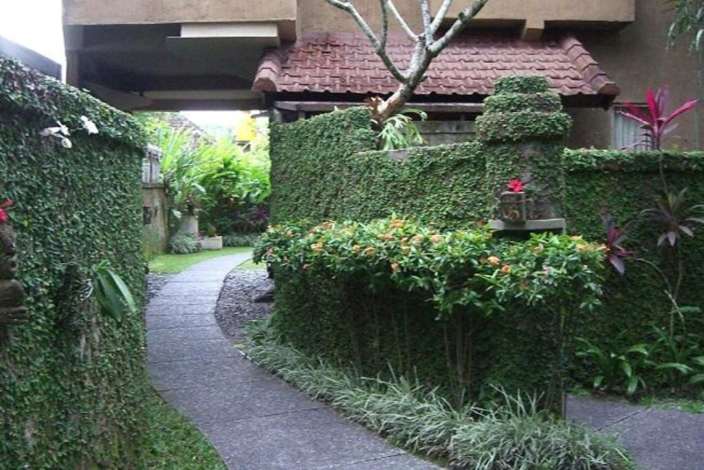 tunjung-mas-bungalow-bali-ubud-review
