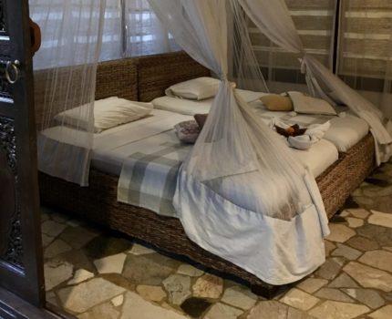 バリ島 ウブド ビスマ通りの可愛いゲストハウス 🌸プリ チャンティック(PURI CANTIK) 女性1人旅でも安心💫 バリの雰囲気たっぷり