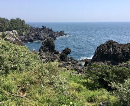 初めてのチェジュ島(済州島)🌴🌴 カーチャーターしてチェジュ島 南側 観光スポットへ (観光編)