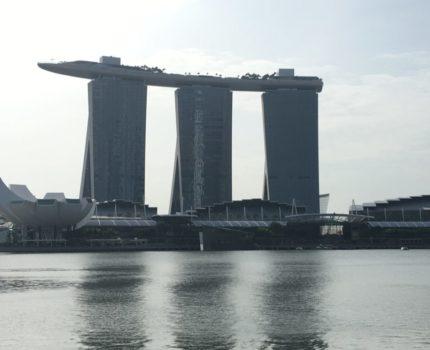 シンガポール・チャンギ空港 ✨乗り継ぎ時間も退屈しない❣️市内観光無料ツアー が勧めです