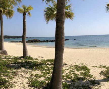 奄美大島2泊3日の旅 2日目  手付かずの自然とグルメ地元の食堂はコスパが高く大満足の旅
