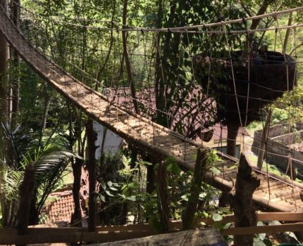 バリ島 東部に新しくできたお勧めの観光スポットルマ ポホン ブキット レンペット (Rumah Pohon Bukit Lemped)